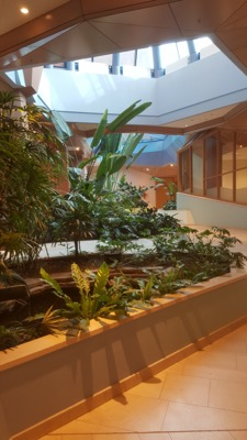 Met een interieur met planten haalt de tuinvrouw de tuin naar binnen.