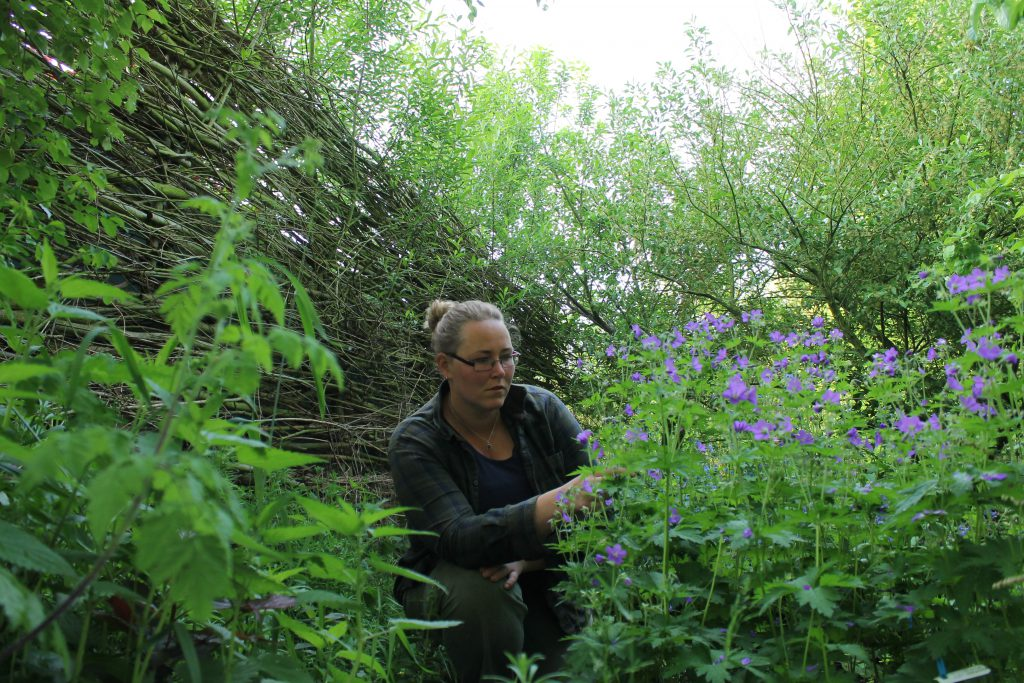 De tuinvrouw is het bedrijf van Ietje Bouma en staat voor hart voor tuinen. Tuinaanleg, tuinbeheer,tuinonderhoud op Terschelling.