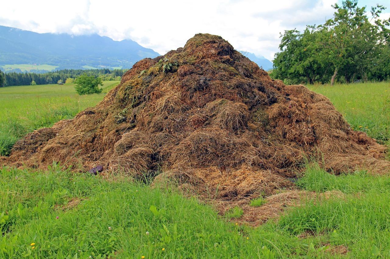 Hoe, wat, waar en wanneer van een composthoop via Tuinvrouw Terschelling