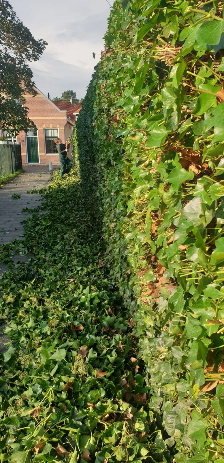 tuinvrouw Terschelling Hovenier